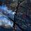 Αχαΐα: Ανυπολόγιστη η καταστροφή από την πύρινη λαίλαπα – Μάχη με τις αναζωπυρώσεις από επίγειες δυνάμεις και εναέρια μέσα στο μέτωπο της Δροσιάς